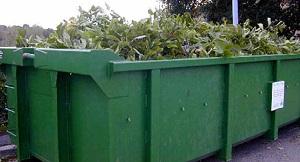 Collecte des déchets végétaux 2021